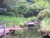 Japanese Garden - Path Along Water