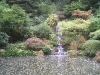 Japanese Garden - Waterfall