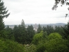 Portland - Obscured View from Japanese Garden