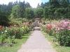 Portland Rose Garden - Sidewalk