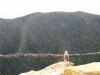 Rockies - Bird on a Rock