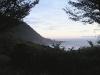 oregon-coast-through-trees-at-sunset