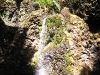 smaller-waterfall-in-oregon-woods
